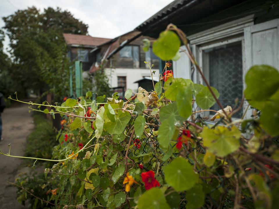 Vorgarten in Snipiskes